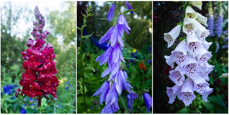 Cambria Flowers Triptych